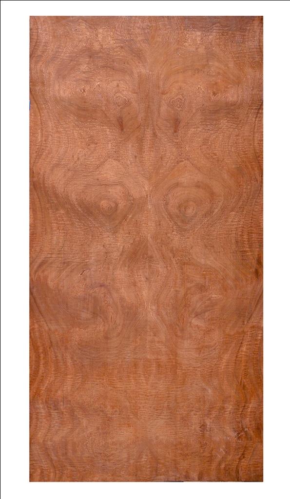 Redwood Super Burl 2