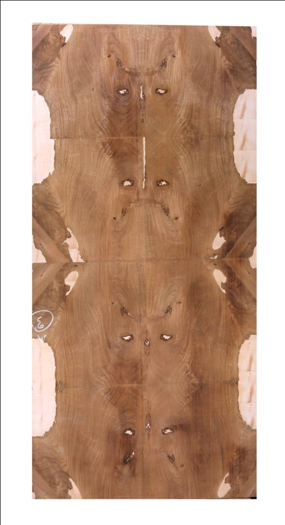 Bolivian Crotch With Sycamore