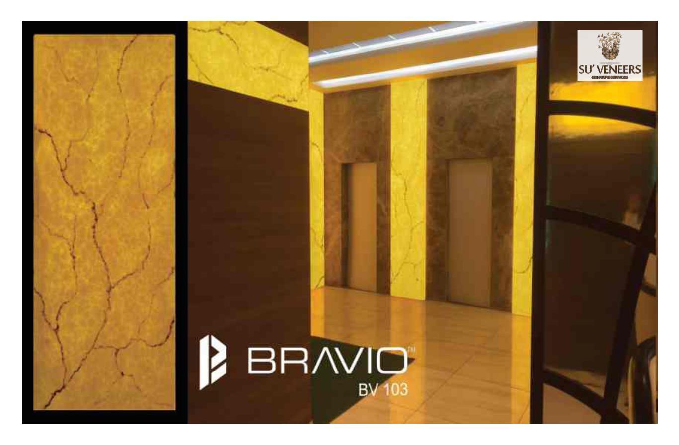 Bravio_5